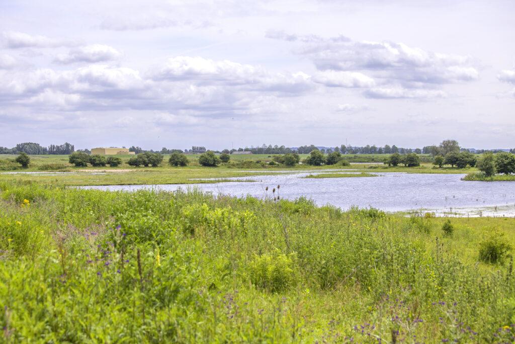 rivier-algemeen